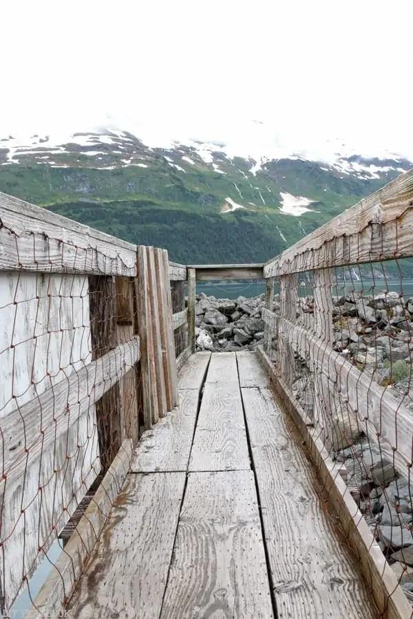 Alaska_travel-49