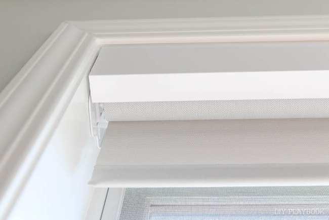 roller-shade-window