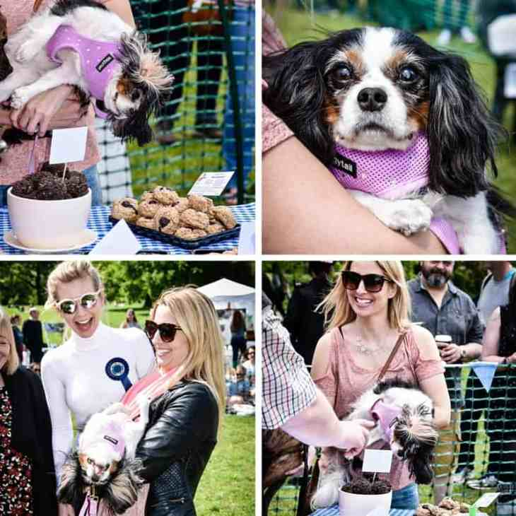 All Dogs Matter Great Hampstead Bark Off - Best Judge