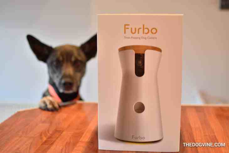 Furbo Dog Camera 1