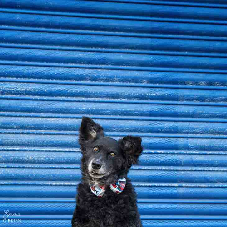 Belinha London Dog Photo Shoot with Emma OBrien_0098