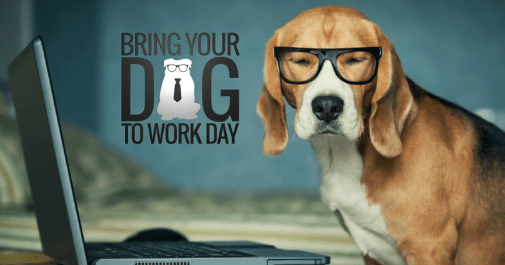 Bring Your Dog To Work Day 2017