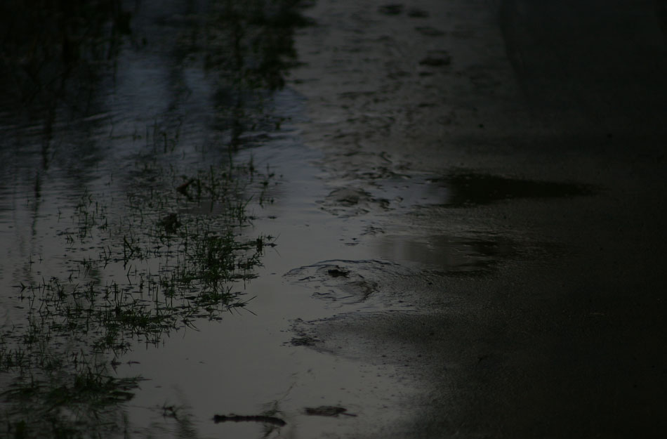 muddy-wet