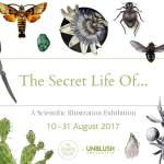 The Secret Life Of... | August 2017