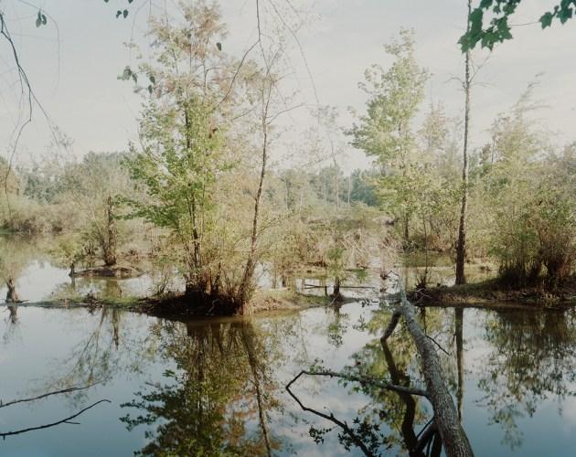 North_Carolina_Initial_Investigations_015 copy