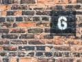 6-Spot