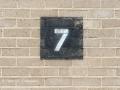 7-Spot