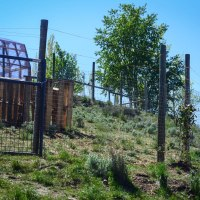 Building A Chicken Run (And Why I Hate Free Range Chickens)