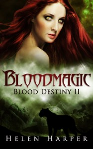 Cover_Bloodmagic11