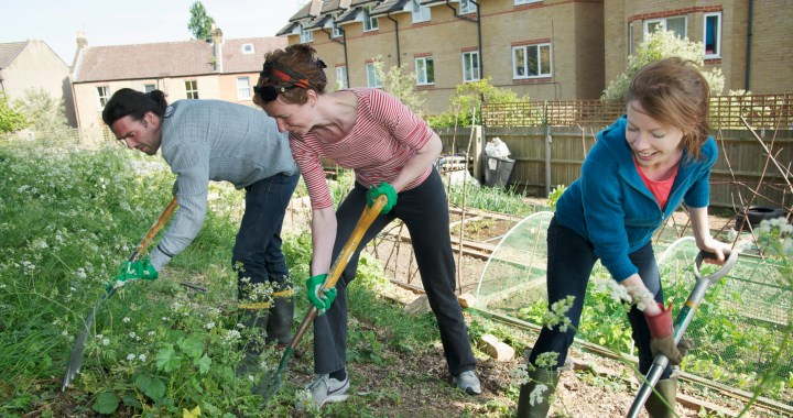 two women and a man working in a community garden