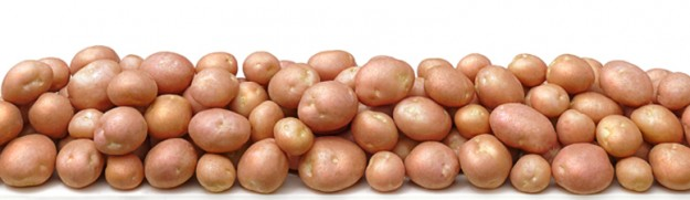 Don't let myths about potatoes keep you from benefiting from this nutritious vegetable