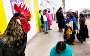 On the market in San-Christobal de las Casas (Mexico, Chiapas); Photo: Thomas Alboth