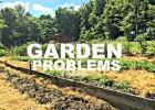 garden problems 1.32