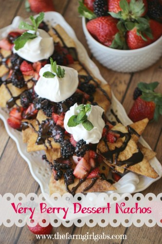 Very Berry Dessert Nachos - an easy yet elegant dessert recipe by www.thefarmgirlgabs.com