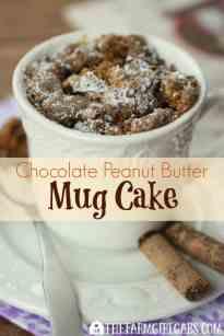 American Girl Cake In A Mug Recipe