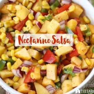 Nectarine Salsa - Feature2