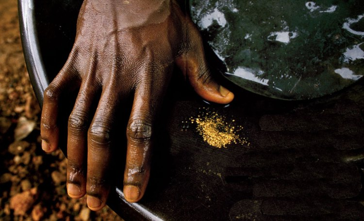 Mining gold in the Gabon Republic's Minkebe forest