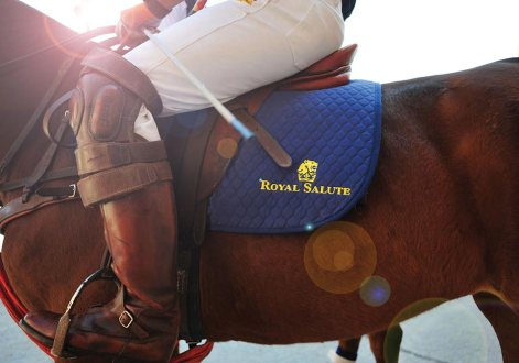 A polo player prepares for action at the Royal Salute Maharaja of Jodhpur's Golden Jubilee Cup