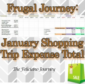 The Feliciano Journey friday-linky-party  The Feliciano Journey jan-shopping-ttl