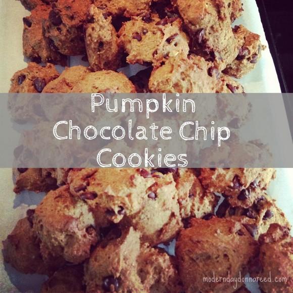 Pumpkin Chocolate Chip Cookies recipe photo