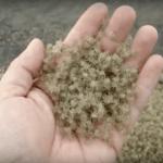 Crab Sand