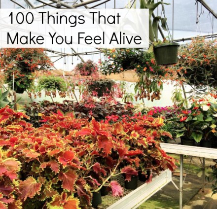What Makes You Feel Alive