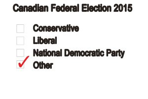 WEB_OPI-other-political-parties-Kim-Wiens