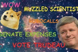 web_opinions_tom_stephen_harper_doge_cred-graphic_jaclyn_mcrae_sadik