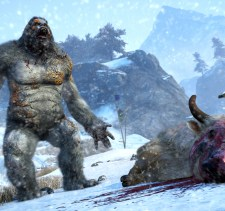 Valley of the yetis screenshot 3