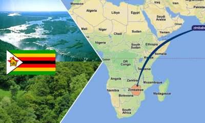 zimbabwe homophobia