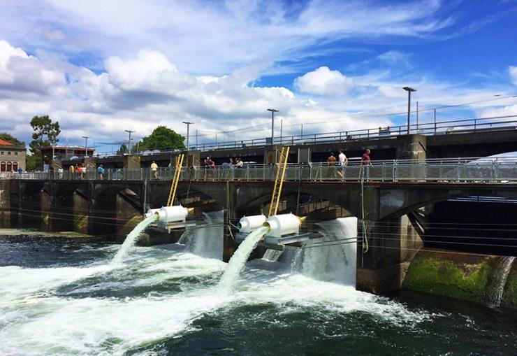 Seattle - Ballard Locks