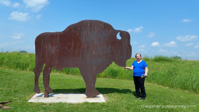 Iron buffalo  © Paul H. Byerly