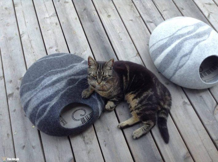 kedi yatagi8
