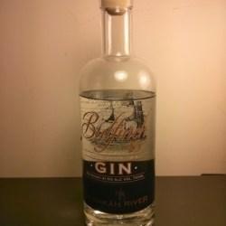 bullfinch gin bottle
