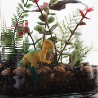 DIY Kids Terrarium Craft