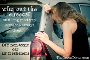 diy non-toxic car air freshener post image