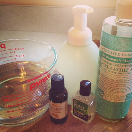 Green Diva Meg's DIY foaming hand soap ingredients