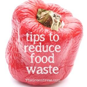 Food waste queen of green
