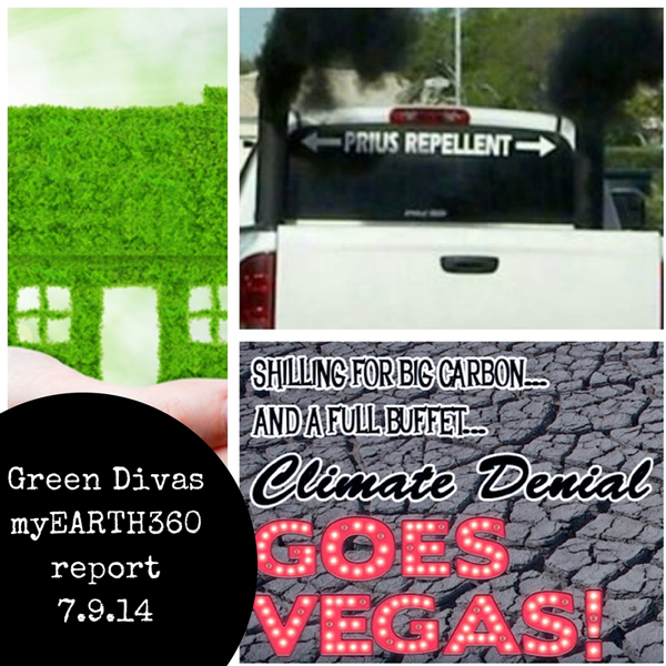 green divas myearth360 report july 9