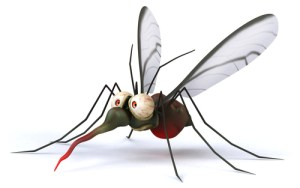 mosquito and deet