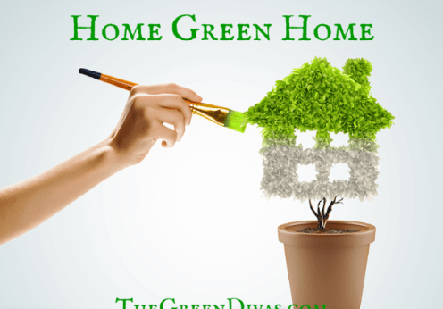 eco-friendly home image on the green divas