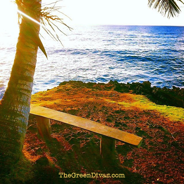 Green Divas meditation spot in Hawaii 2014
