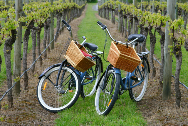 bike wine country