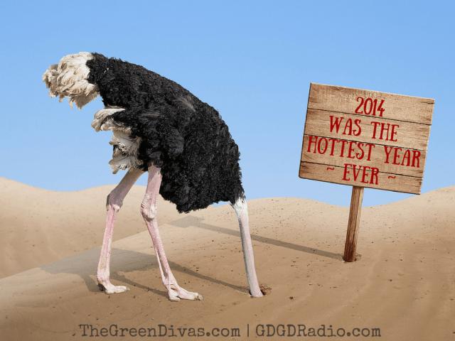 ostrich in denial, head in sand 2