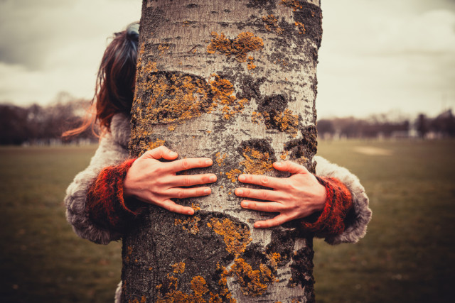 hugging a tree can make us feel happy