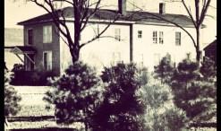 family farm, the johnson homestead