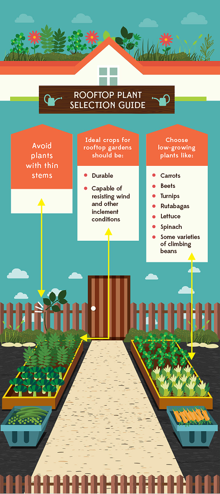 rooftop-garden roof preparation infographic