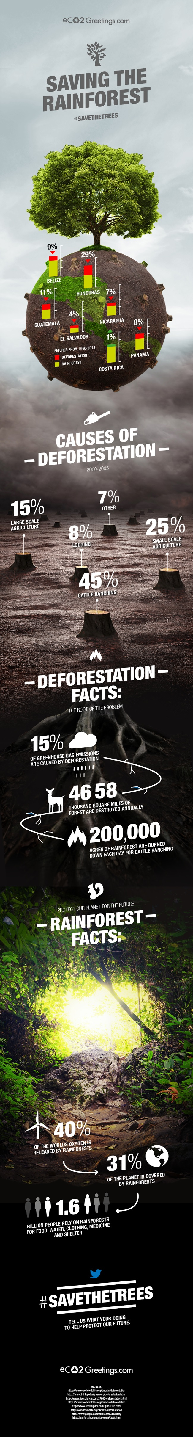 alarming facts about deforestation infographic