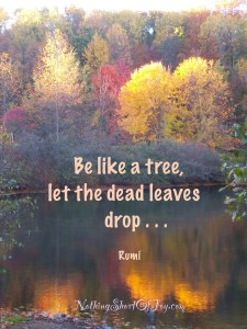 %22Be like a tree, let the dead leaves drop. .....~Rumi