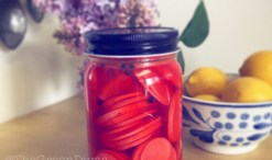 1 gd minute easy pickled radishes recipe and video